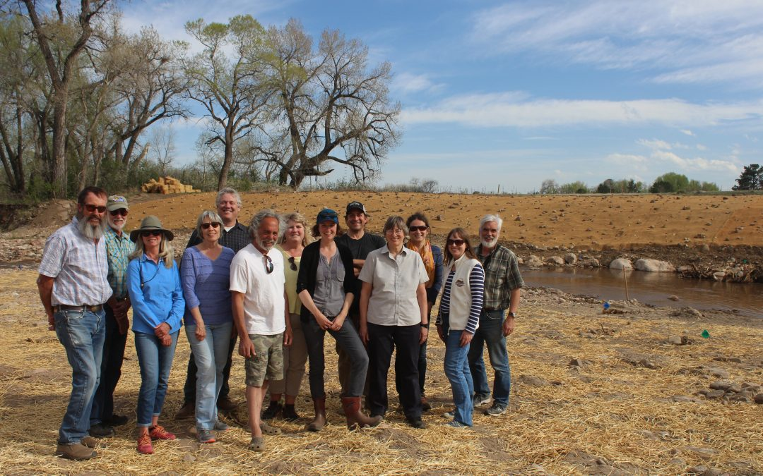 Flood Recovery Blog Series Post 4: A Community of Stewards: The Streamcrest Example