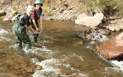 Front Range Watershed Days: Participant Review